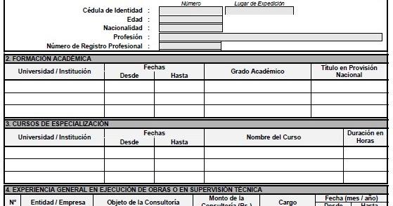 Formulario A 6 Curriculum Vitae Experiencia General Y Especifica