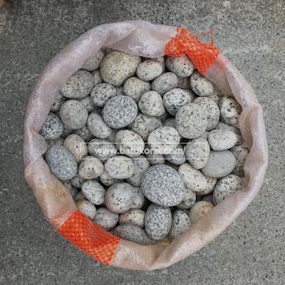 batu warna telur puyuh