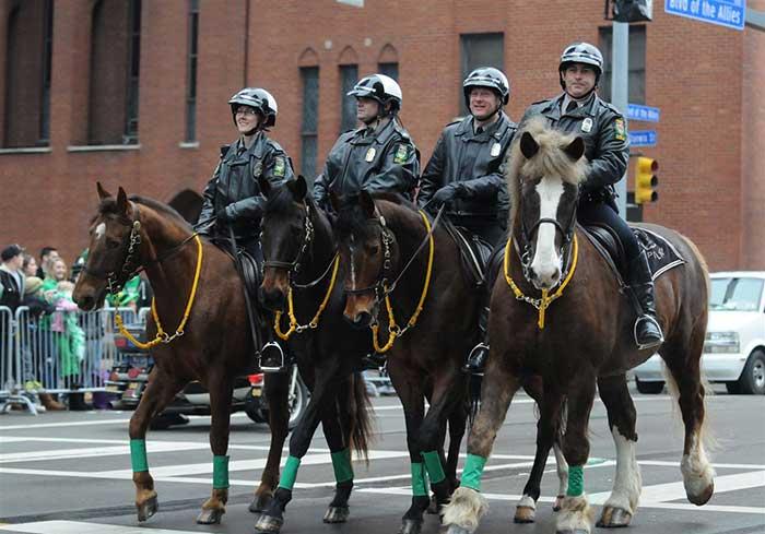 Kuda Polisi