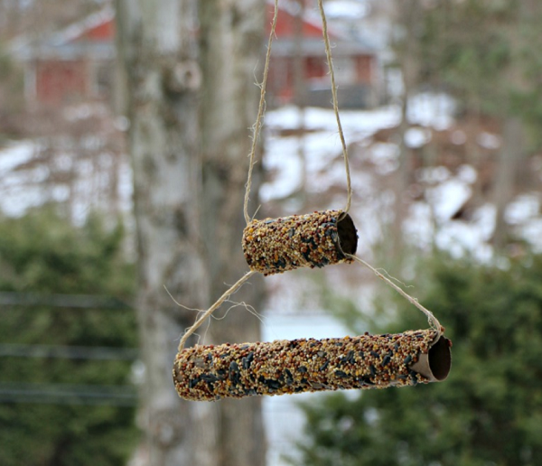 2 level hanging toilet paper roll birdfeeder