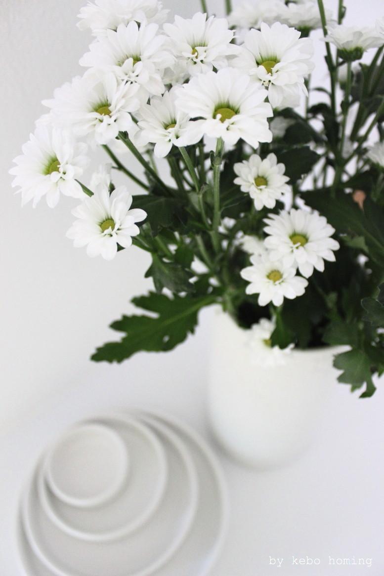 floral friday white chrysanthemums, weiße Chrysanthemen, Blumenliebe auf dem Südtiroler Food- und Lifestyleblog kebo homing