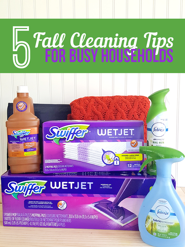 Fall is here! Take a few minutes over the next couple of days and get your house in order with these 5 cleaning tips for busy households.