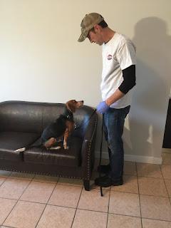Aaron bed bug dog atlanta, bed bug dog savannah, bed bug dog macon,