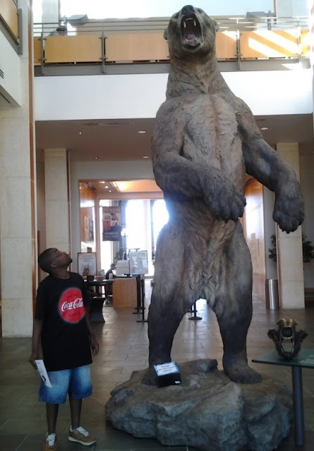 Giant short-faced bear - Beruang raksasa yang memiliki ukuran yang besar