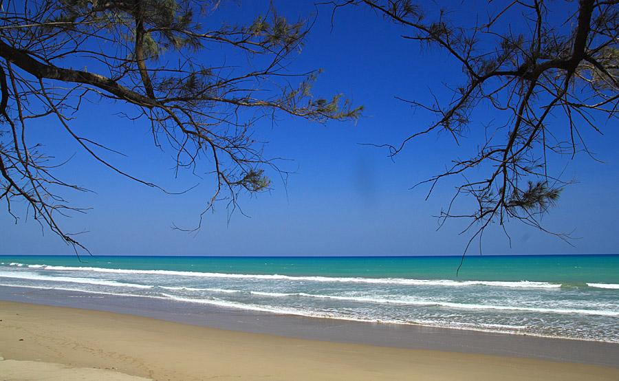 Image result for pantai oetune di nusa tenggara timur