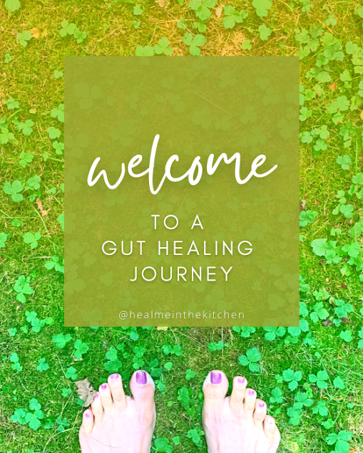 welcome to a gut healing journey