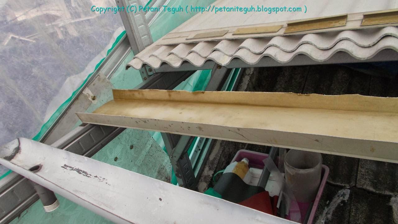 Sistem Semai di Talang PVC dengan Aliran Air  Pertanian