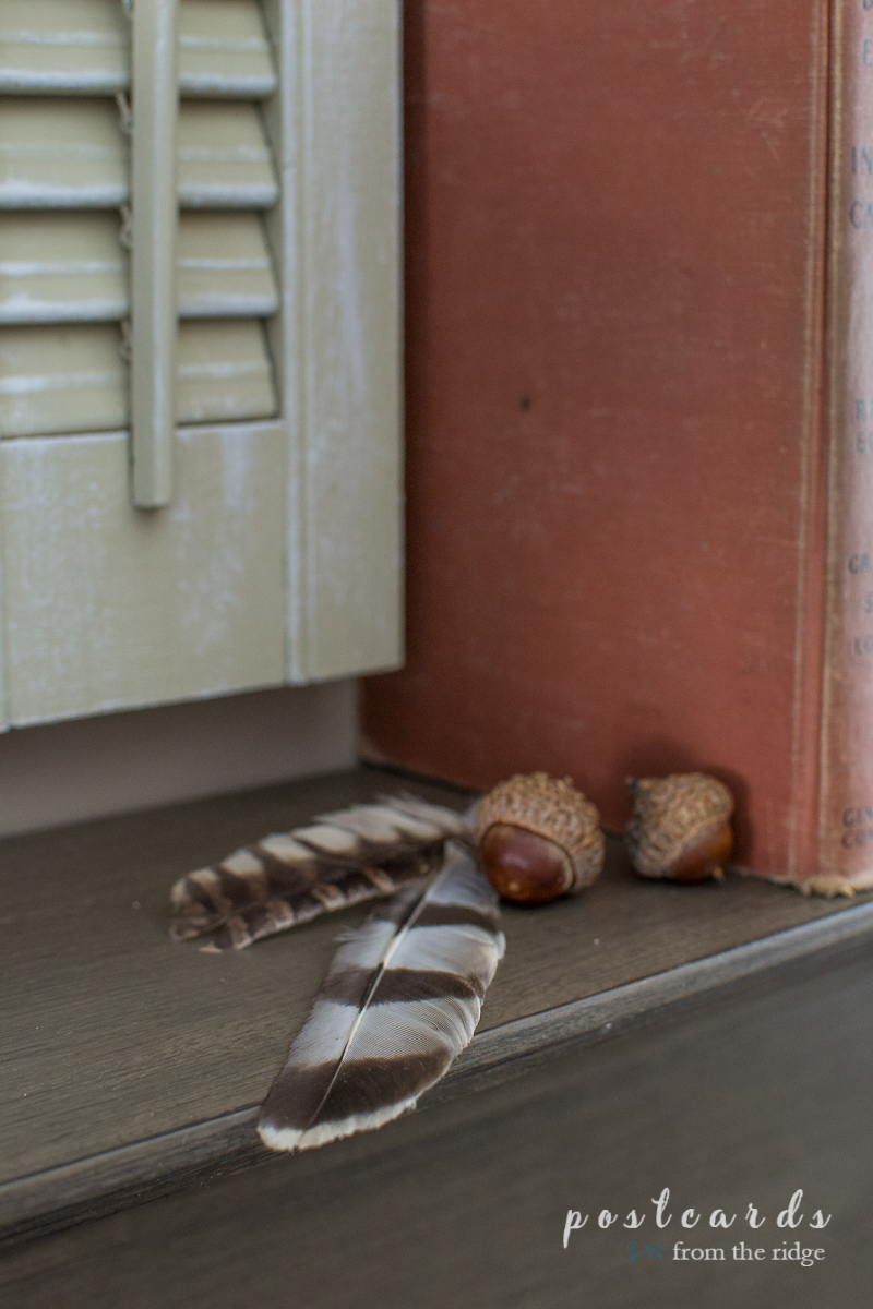 acorns and feathers on a brown mantel