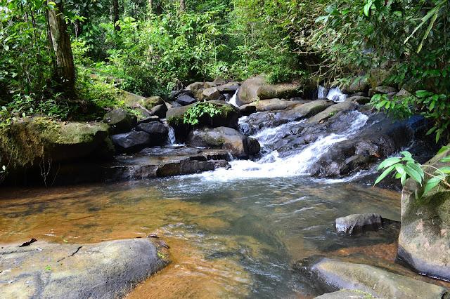 guyane, chute de fourgassié, cascade