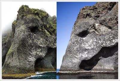 http://infomasihariini.blogspot.com/2016/11/gajah-laut-raksasa-terlihat-di-islandia.html