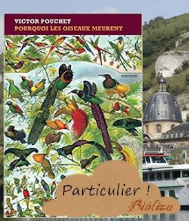 pourquoi les oiseaux meurent Victor Pouchet Finitude Rentrée Littéraire 2017 Premier Roman avis critique chronique blog
