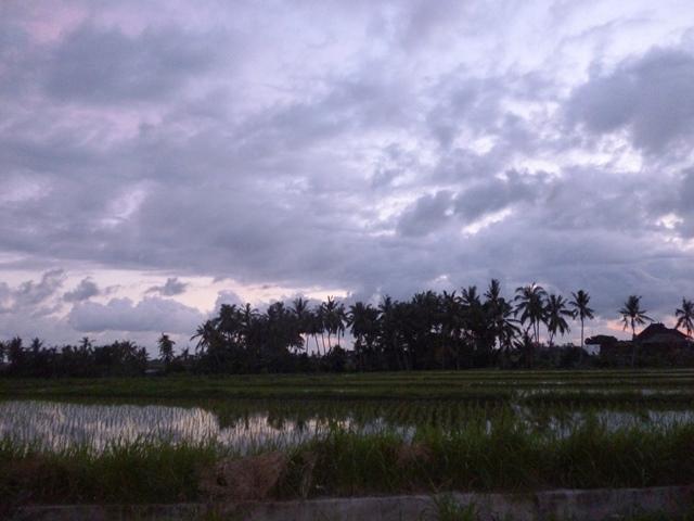 FREEHOLD VILLA CLOSE TO HIDDEN CANYON GUWANG - BALI