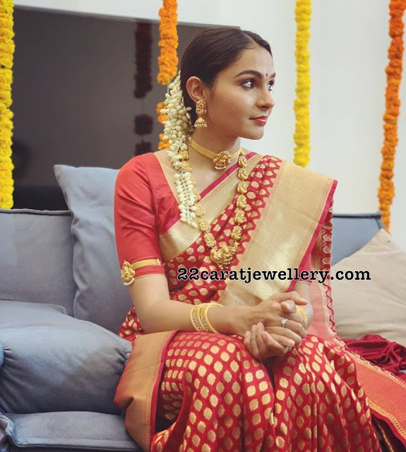 Andrea Jeremiah in Nakshi Long Chain