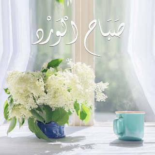 صور خلفيات صباح الخير صباح الورد صباح الفل