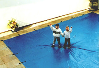 capa de piscina - proteção