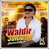 Waldir Junior - História de Amor - Vol. 06