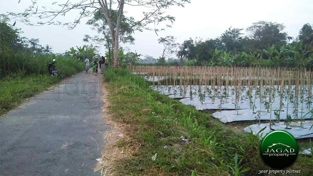 Tanah Sawah jalan Palagan Km 9,5