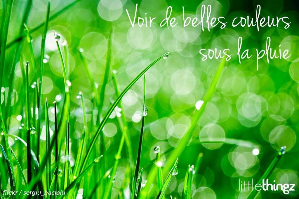 couleur, vert, pluie, goutte, happy journal