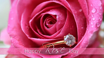 Happy Rose Day Images for Whatsapp DP