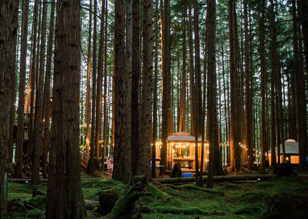 La magia de celebrar en el bosque_17