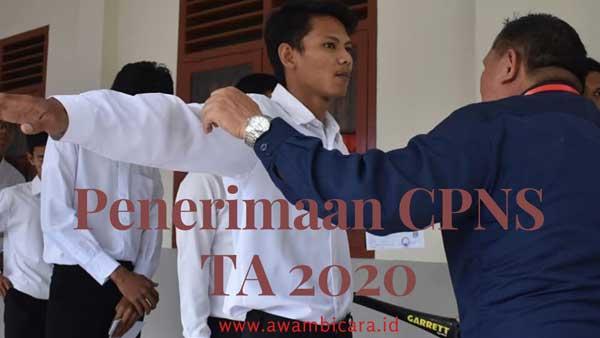 penerimaan cpns ta 2020 dipastikan batal