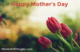 happy-mothers-day-flower-wallpaper