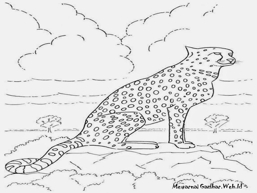Lembar Mewarnai Gambar Cheetah