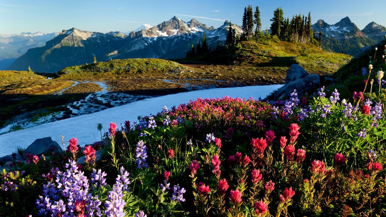 Amazing World Photos: Amazing Nature