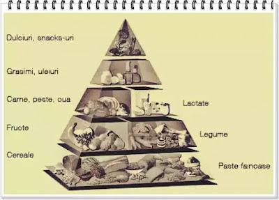 wiki piramida alimentara a copiilor explicata
