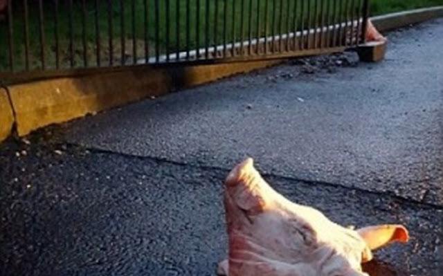 Hallan dos cabezas de cerdo en la residencia del embajador de Marruecos en París