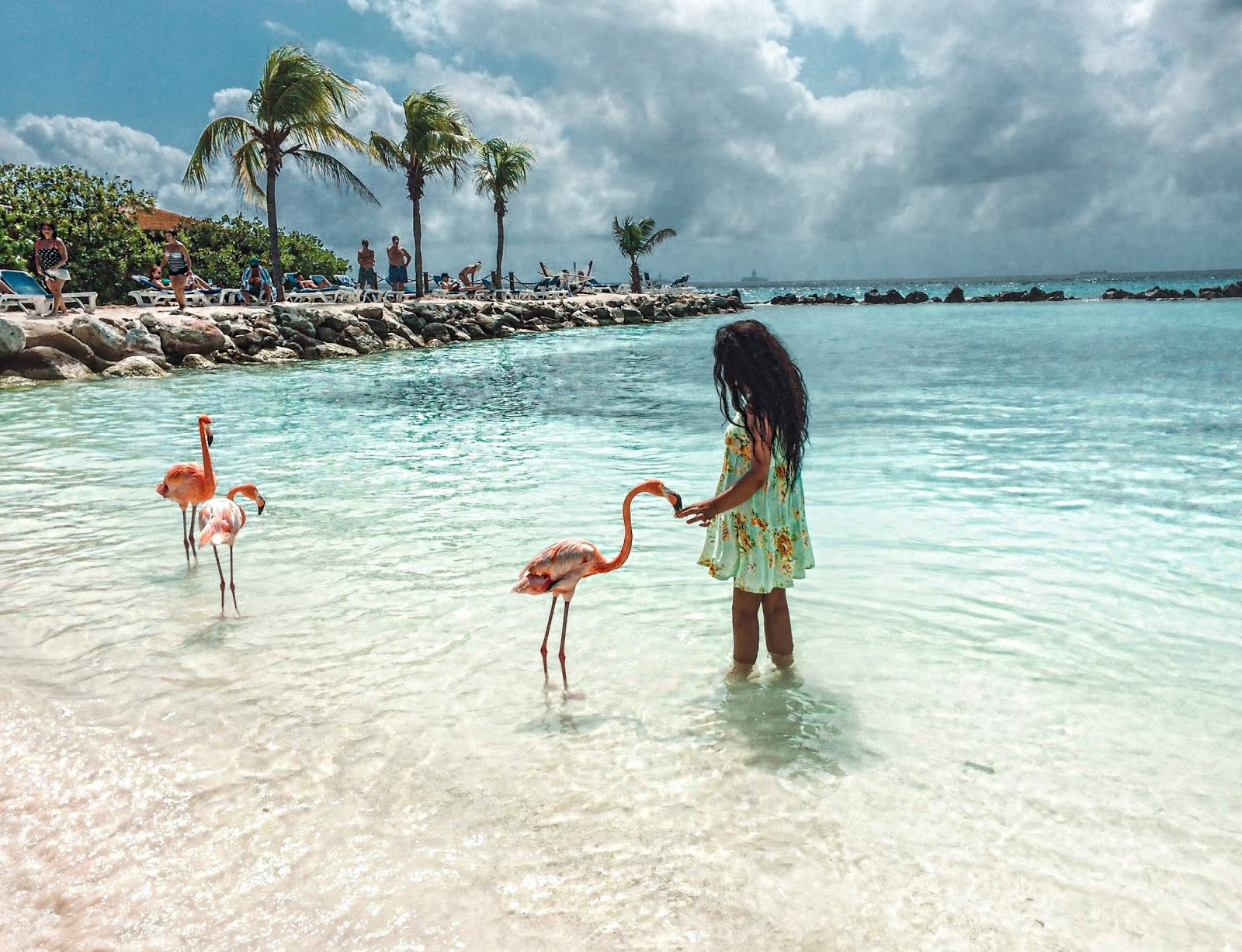 Things to do in Aruba