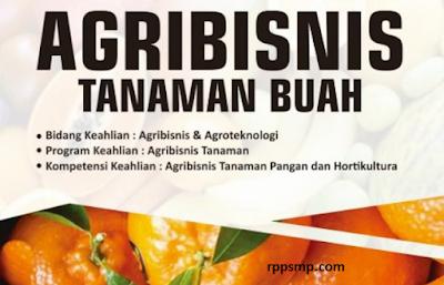 Rpp Agribisnis Tanaman Buah Kurikulum 2013 Revisi 2017/2018 dan Rpp 1 Lembar 2019/2020/2021 Kelas XI XII Semester 1 dan 2