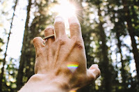 Healing Touch - Photo by Aarón Blanco Tejedor on Unsplash
