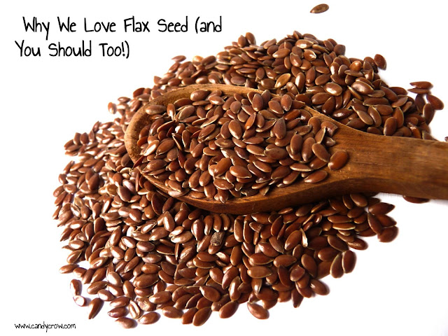 Why We Love Flax Seed  where to buy chennai