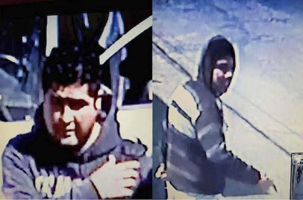 VIDEO: Cuando llegas a la paz de tu casa y dos ladrones te esperan en la puerta