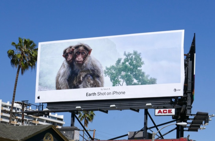 Earth Shot on iPhone Varun A Monkeys billboard