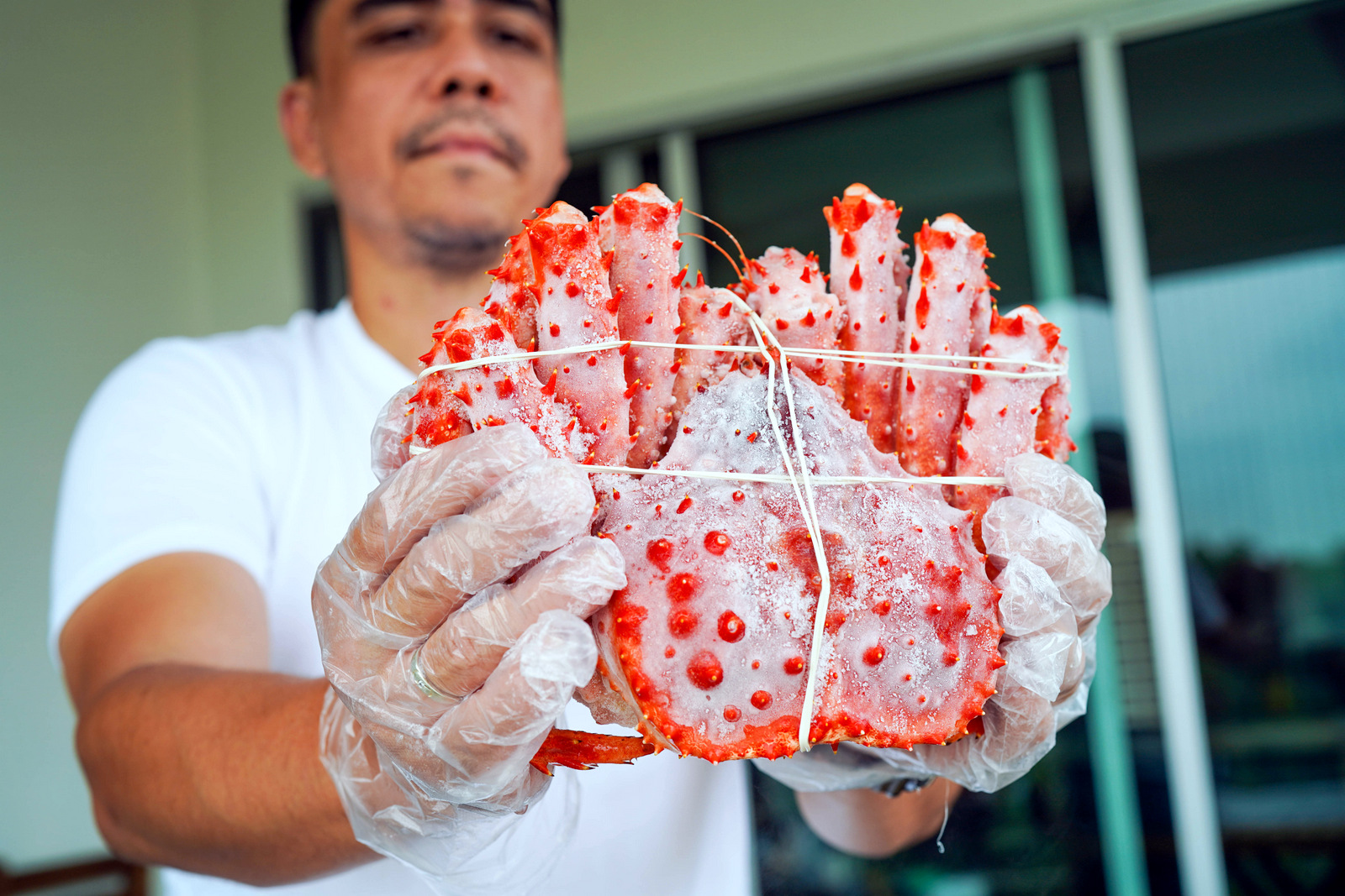 vfresh food supply: seafood & groceries, from king crabs to pineapple tarts