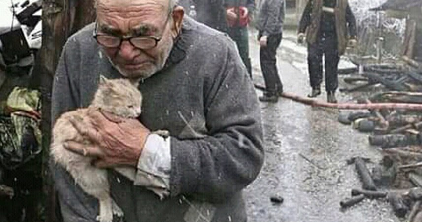 A man lost his home in an accident, but he didn't leave his little cat