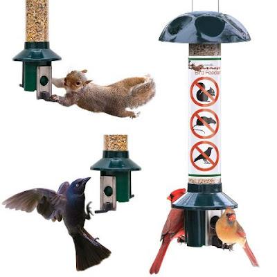 Roamwild Squirrel Proof Bird Feeder