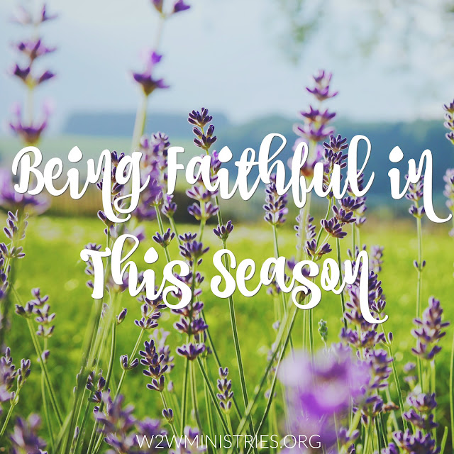 Being Faithful in This Season #faithful #faithfulness #seasons