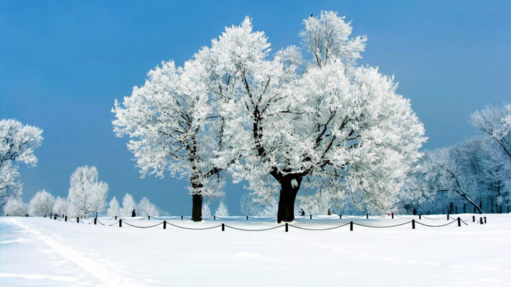 karlı kış resimleri