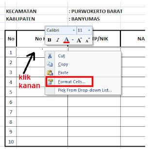 Cara Menulis Atau Input KK, No.KTP dan NO.HP Ke Microsoft Excel