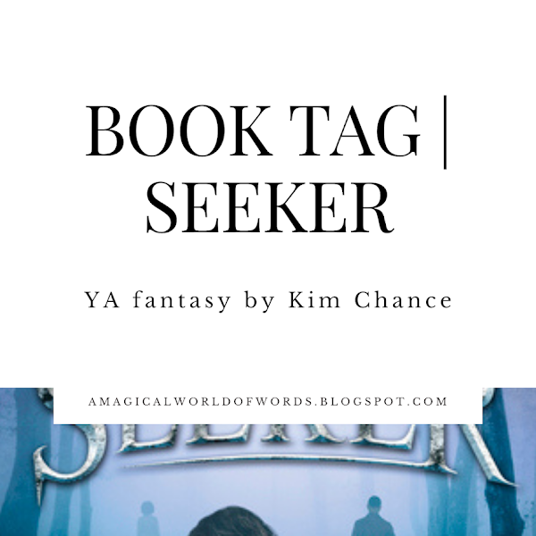 Book Tag: SEEKER - by Kim Chance