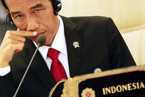 Politikus PDIP: Pak Jokowi, Berani Dong Bicara di Sidang Umum PBB!
