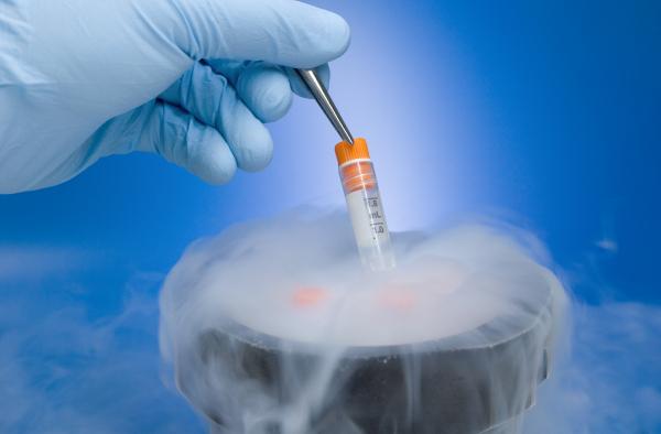 STJ decide que congelamento de óvulos deve ser custeado por plano de saúde