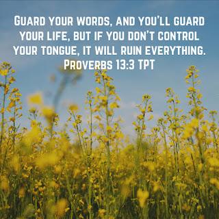 Proverbs 13:3