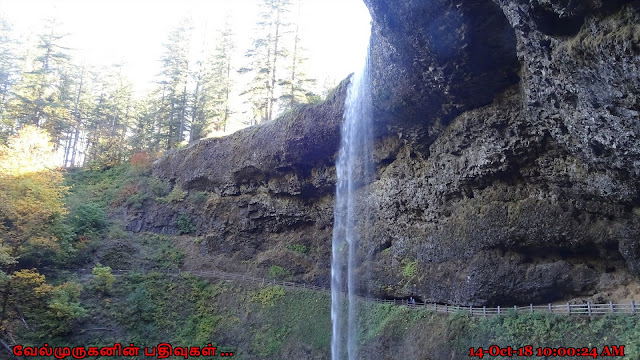 South Falls in Silver Falls State Park