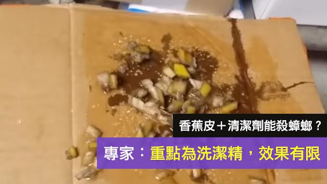 香蕉皮 蟑螂 滅蟑螂別用藥,廚房放點香蕉皮,一晚上蟑螂死光光 謠言