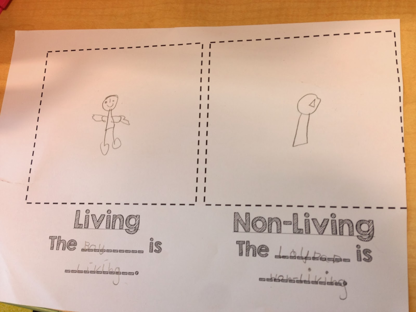 Living And Non Living Unit