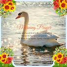 A Morning Prayer & Bible Reading